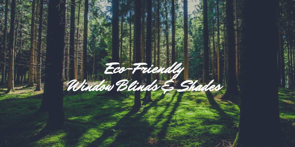 Burlington Eco-friendly window blinds and shades