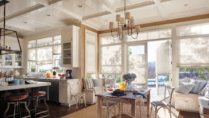 Spotlight On Duette® Honeycomb Shades